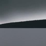 Bluish Black Pearl (ZJ3A)